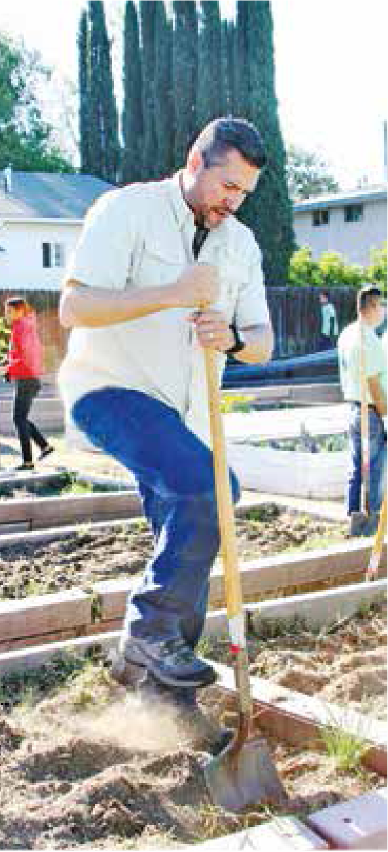 Fuentes gets down and dirty at the community gardens!