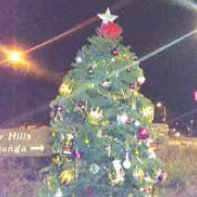 The Community Welcome Christmas tree with its new star see Amber, donated by Amber Sobczak.