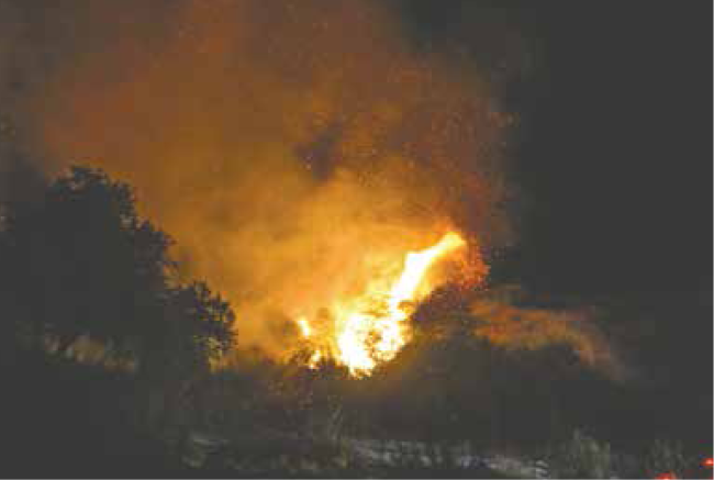 Fire erupts on the side of Riverwood Ranch Road in Tujunga