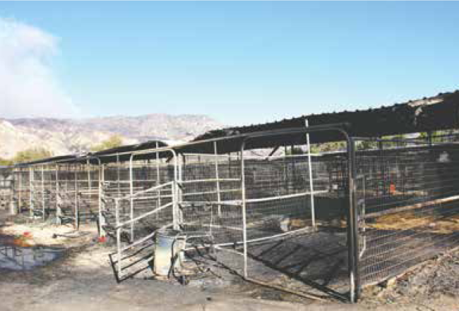 The Creek Fire-damaged stalls and tack rooms of Gibson Ranch await cleanup even as infernos rage in the distance.